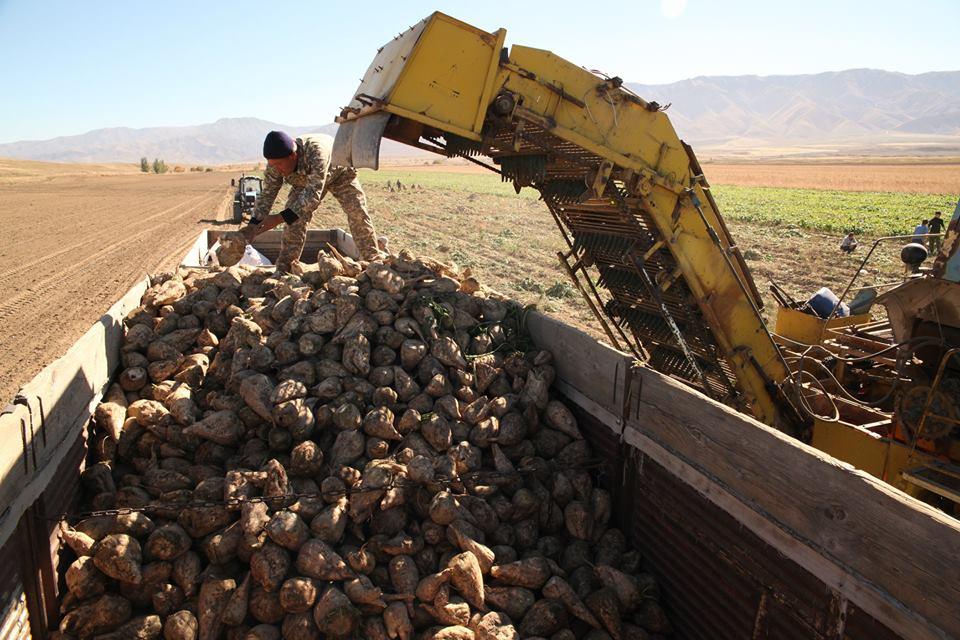 Қостанайдағы «Баян Сұлу» кондитерлік фабрикасы қантты Алматыдан алатын болды