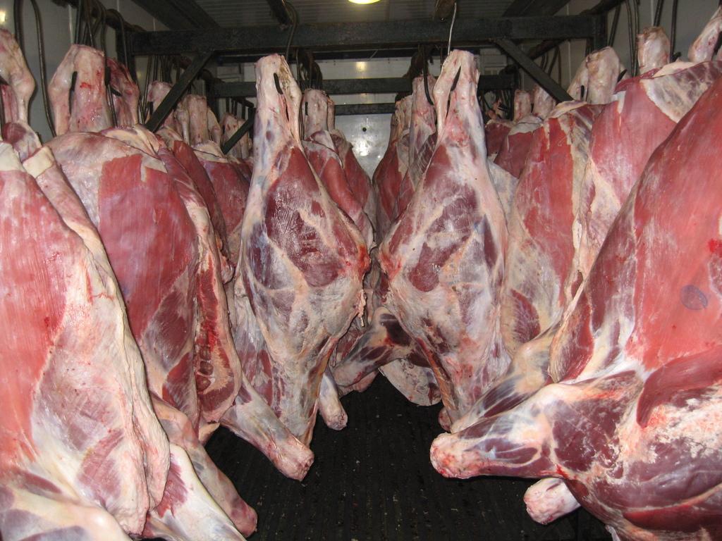 Строительство мясоперерабатывающего комплекса и 16 молочных ферм обеспечат продбезопасность Астаны