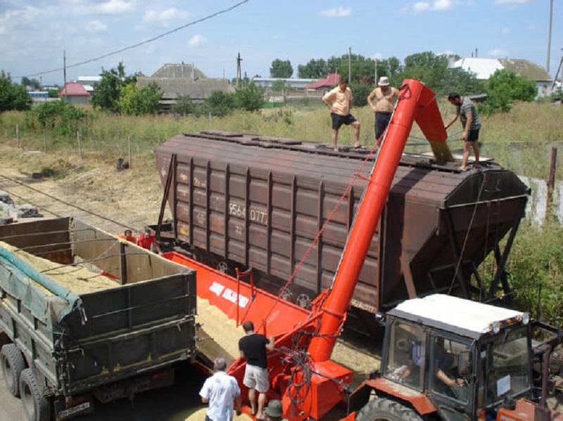 Компания «Астық Транс» сообщила о повышении стоимости предоставления вагонов-зерновозов