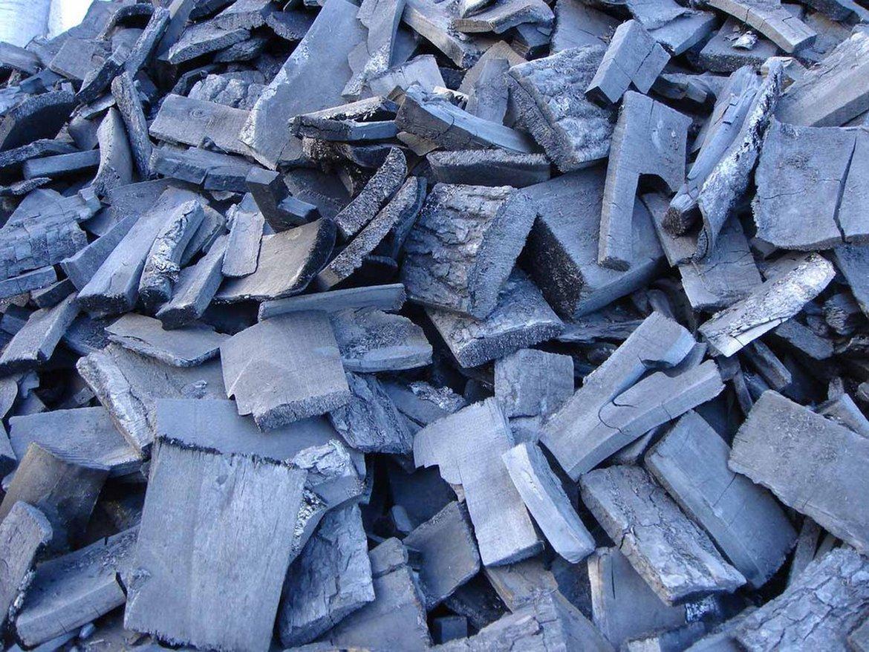 Нелегальный цех по производству древесного угля выявили в Петропавловске