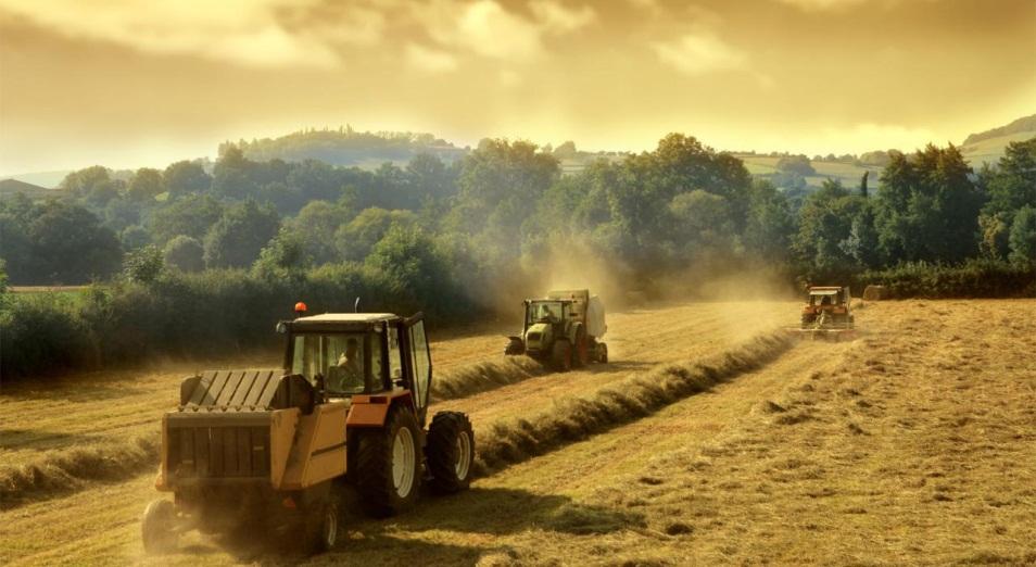 Эффективность сельхозкооперации поставили под вопрос