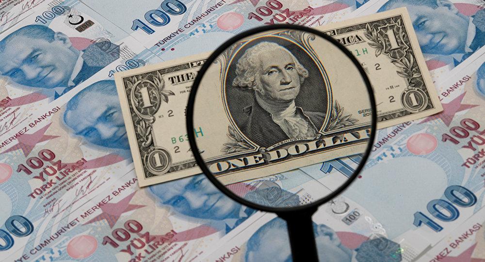 Турция намерена отказаться от доллара во внешнеторговых расчётах
