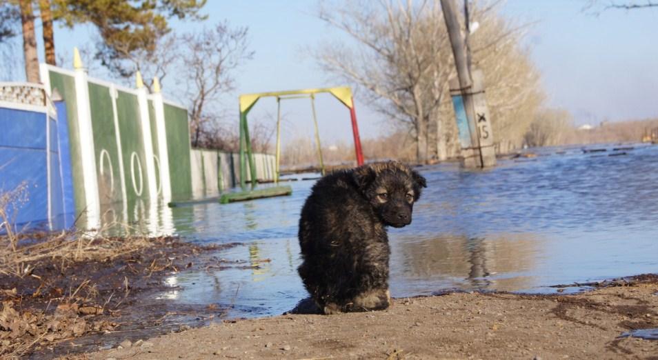 Службы ЧС Карагандинской области переведены в режим повышенной готовности