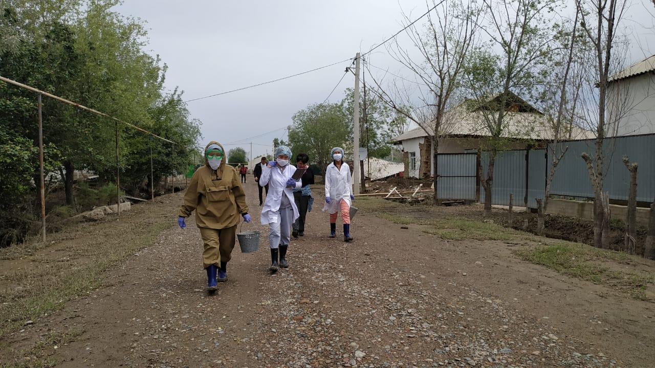 В подтопленных селах Мактаарала проводят дезинфекцию