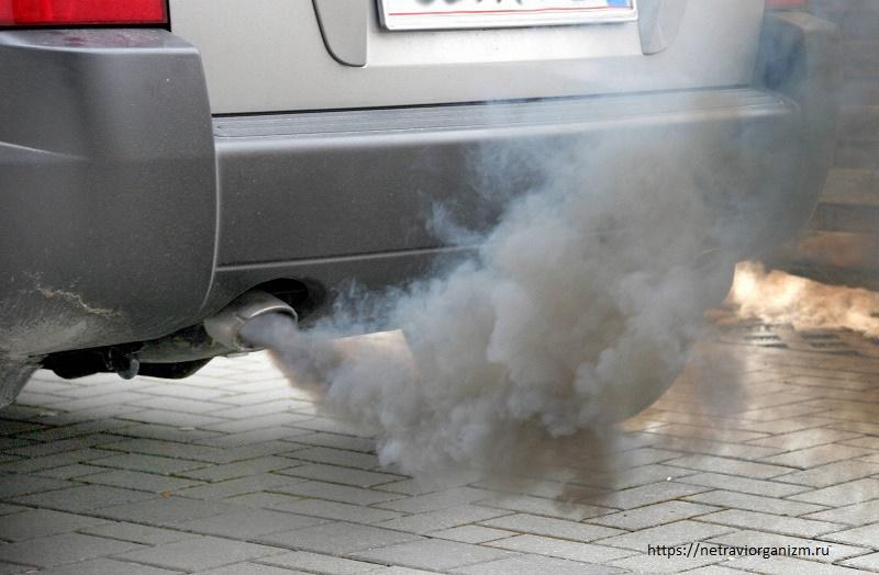 Власти 20 штатов США готовы подать в суд из-за планов отмены экостандартов для авто