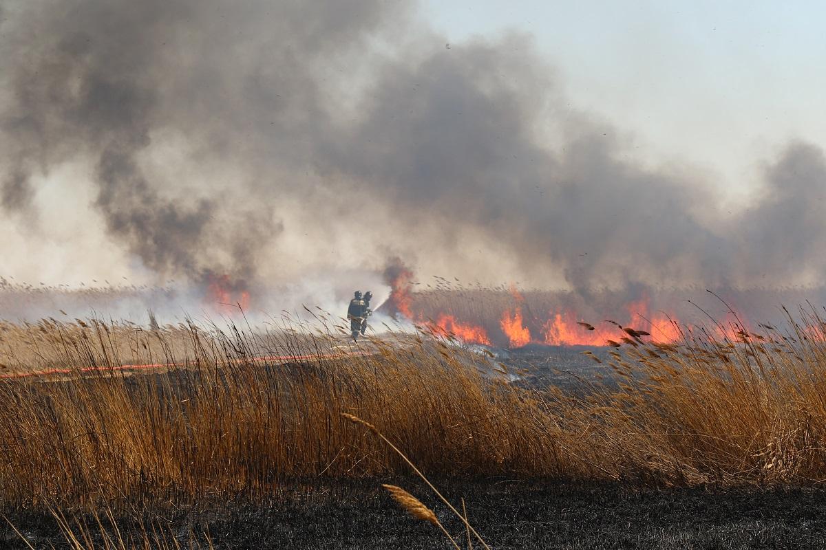 Природный пожар на казахстанском побережье Каспия потушен