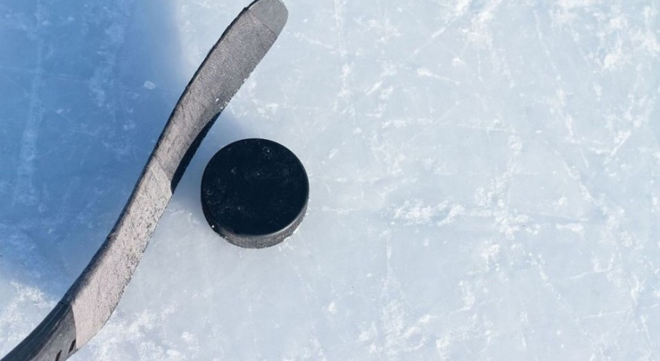 Виртуальный ЧМ по хоккею: Казахстан – последний