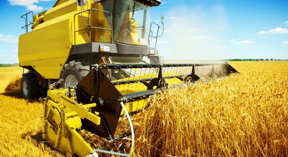 Поднебесная планка для казахстанского зерна