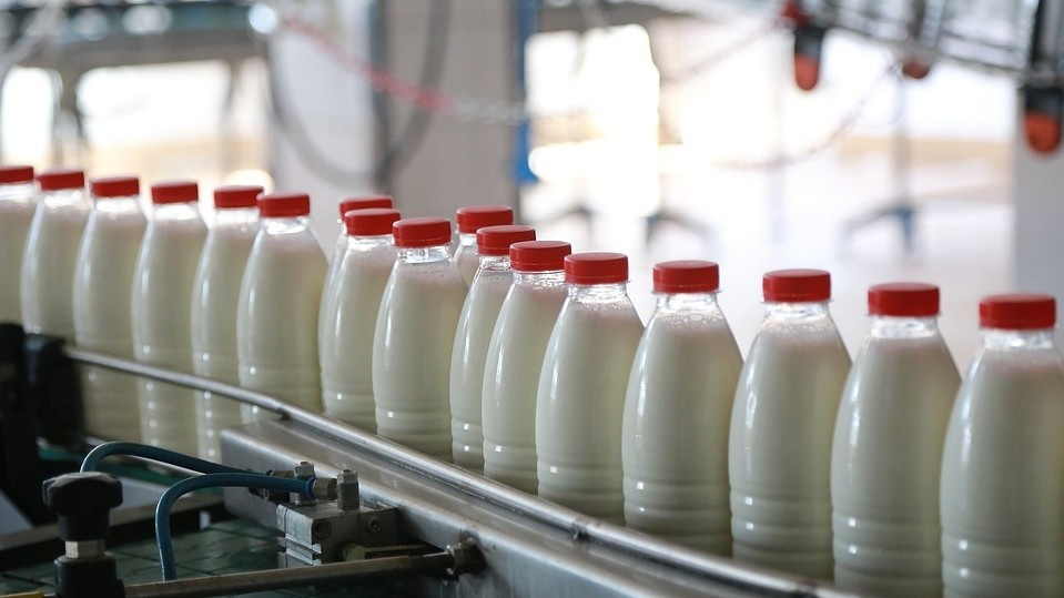 В Алматинской области построят молокозавод за 530 млн тенге