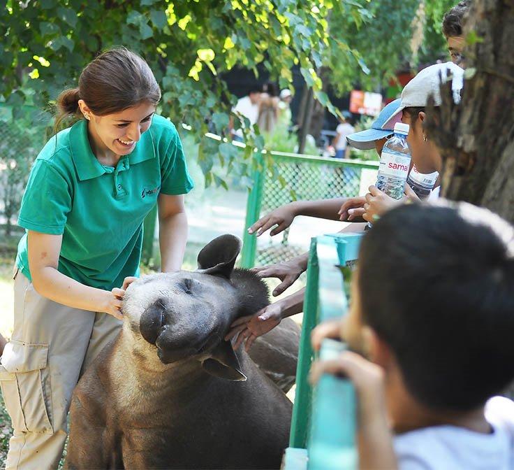Алматинский зоопарк объявил краудфандинг для строительства новой ветклиники