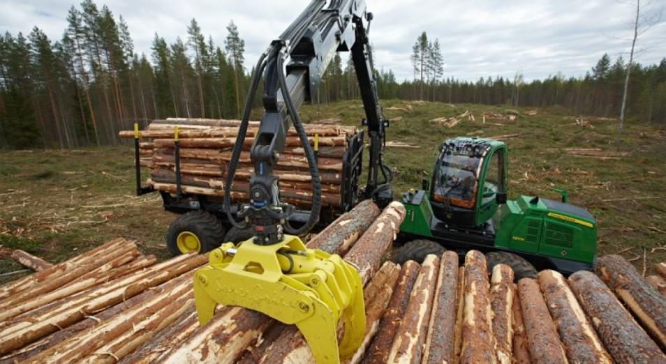 В ВКО не хватает лесоперерабатывающих производств