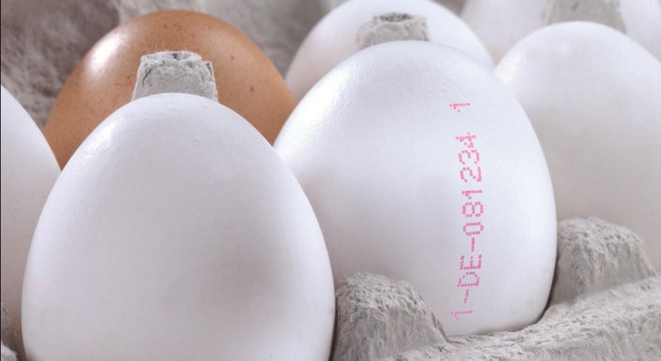 Яйца и мясо птиц попадут под маркировку