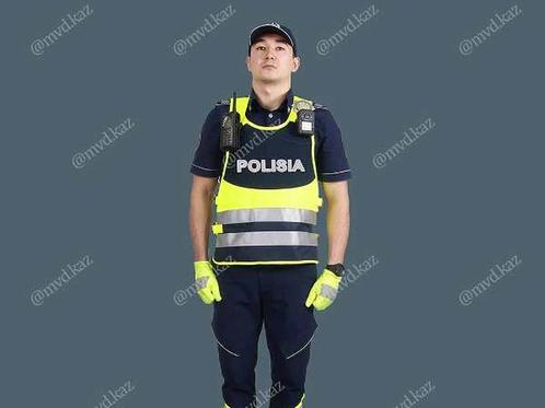 """В МВД еще обсуждают как будет на латинице """"полиция"""""""
