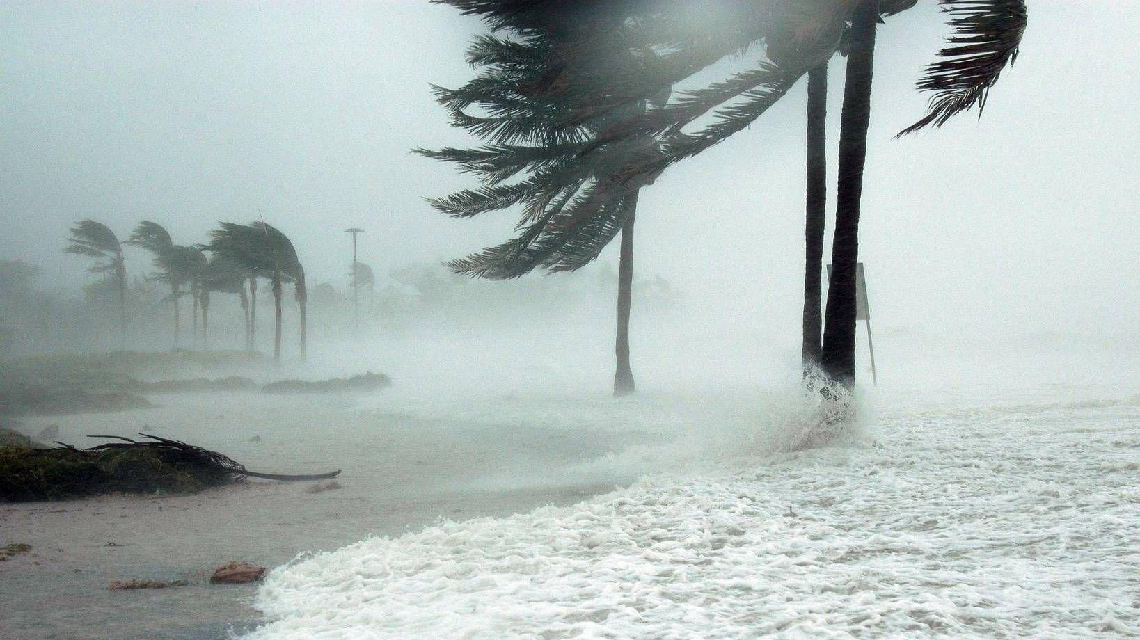 Жертвой урагана «Пабук» в Таиланде стал один человек