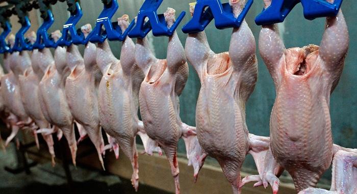Құс етін өндірушілер ішкі нарықтың 58-ын ғана қамтып отыр