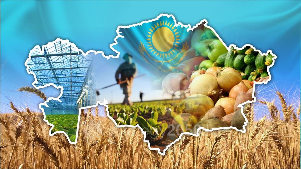 Положительное сальдо внешней торговли Казахстана в январе-мае сократилось на 2%