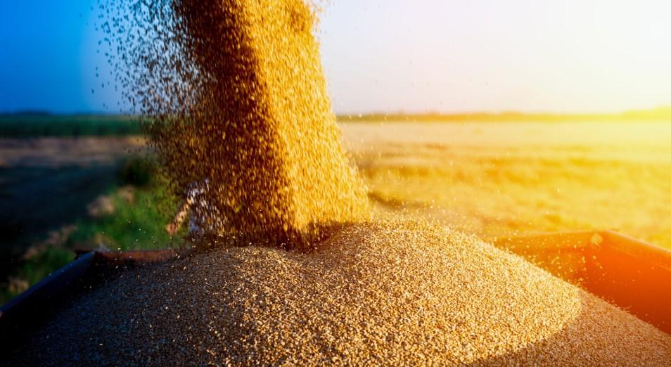 Американские санкции затрудняют экспорт казахстанского зерна в Иран