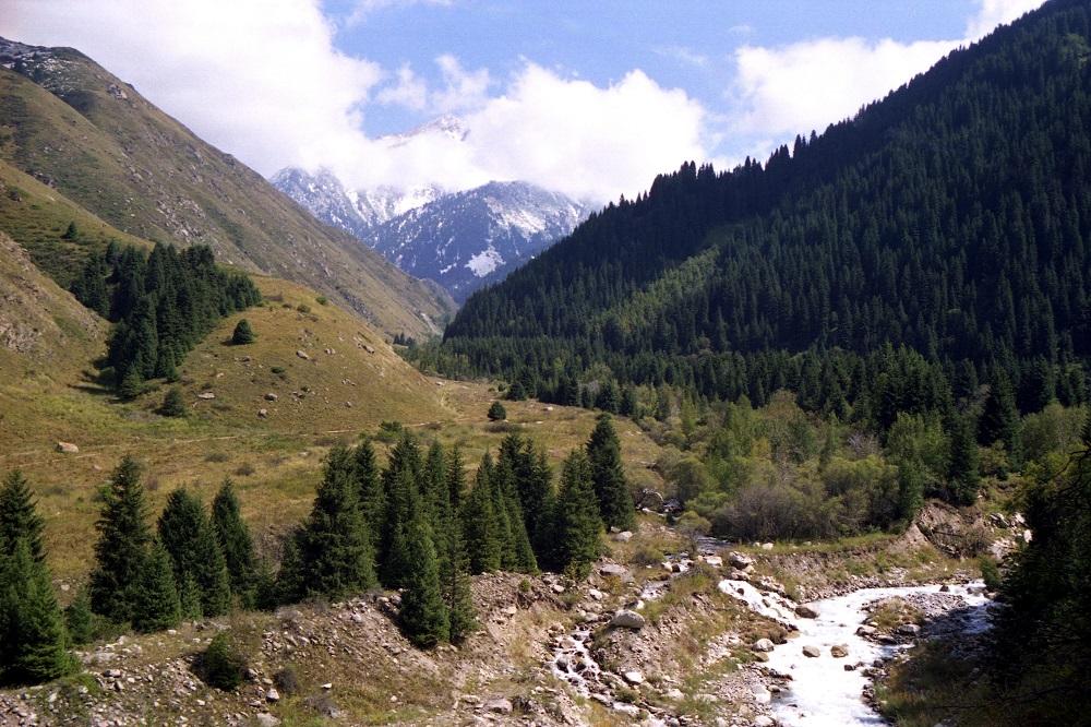 Воду из реки Талгар в Алматинской области можно использовать только для орошения