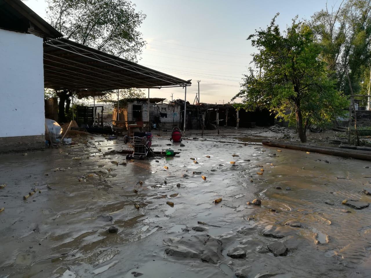 После сильного дождя в одном из сел Алматинской области подтоплены  более 270 дворов