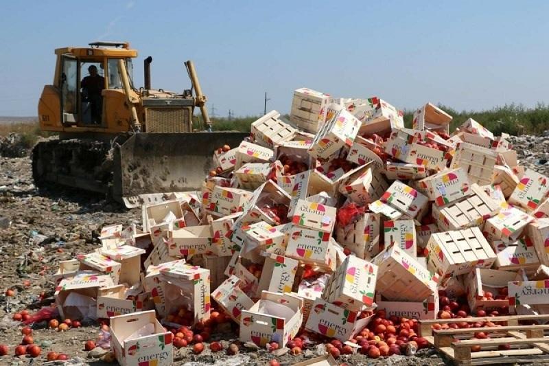 Мир ежегодно теряет продукты питания на $400 млрд