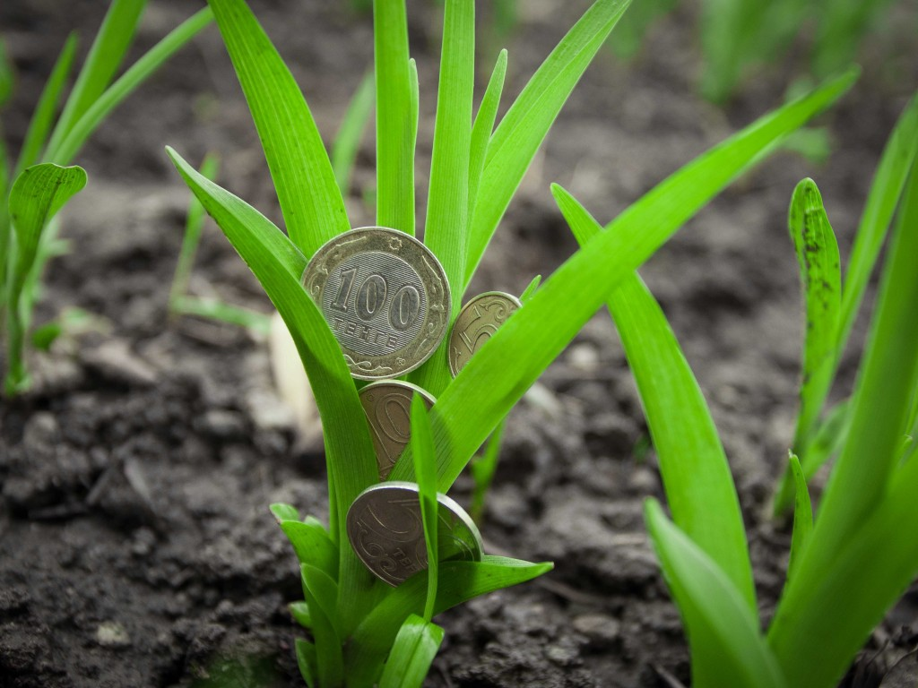 В Казахстане могут ввести единый аграрный налог