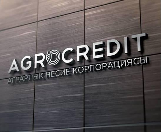 Замглавы Аграрной кредитной корпорации подозревается в коррупции