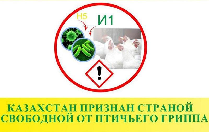 Казахстан признан страной, свободной от птичьего гриппа