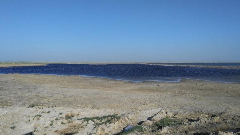 Конкурс по закреплению горько-соленых озер Павлодарской области признан несостоявшимся