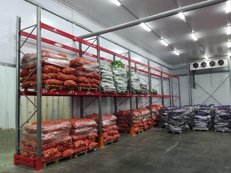Казахстану не хватает складов для хранения 2,8 млн тонн овощей