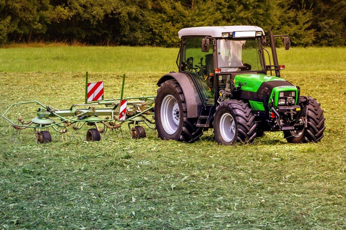 Фермерам РК предлагают продавать сельхозпродукцию онлайн