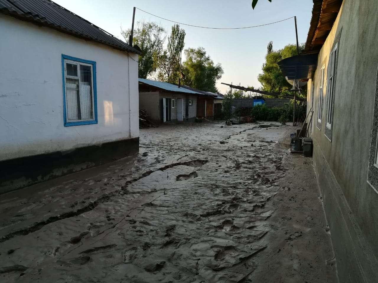В пострадавшем от подтоплений селе в Алматинской области откачали воду почти из всех дворов