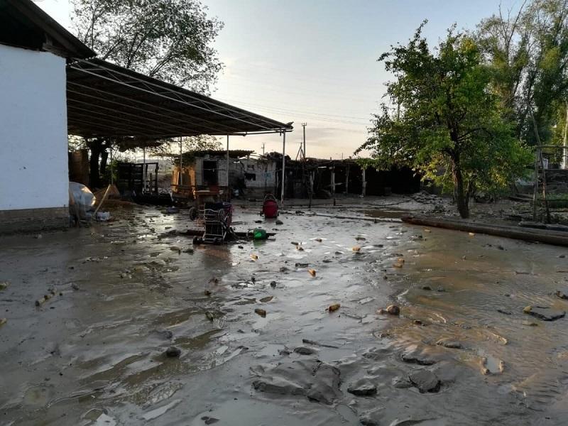 «Халық» қоры  Мақтааралға 50 тоннадан артық гуманитарлық көмек жолдады