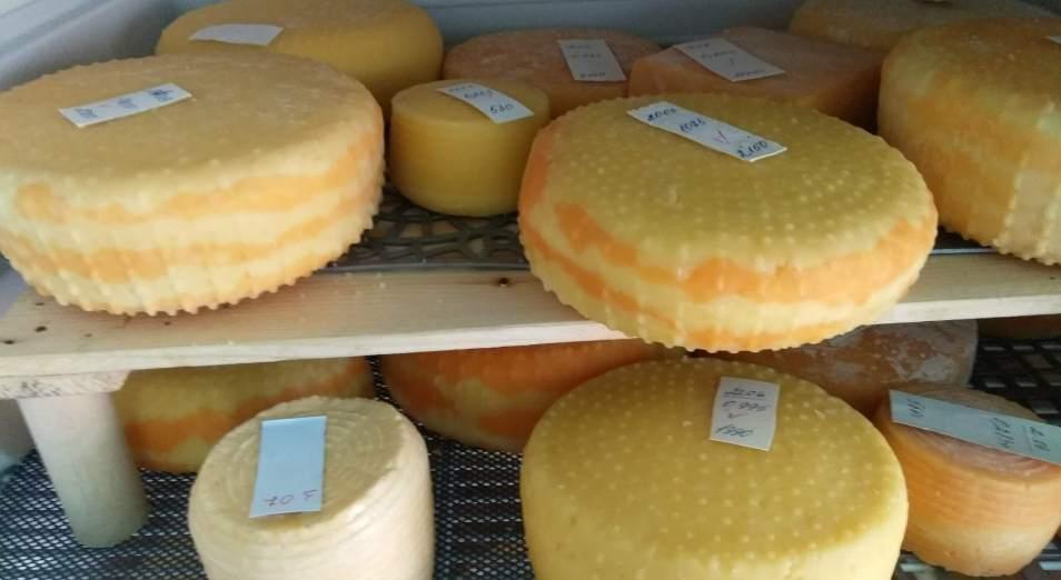 Сварить сыра