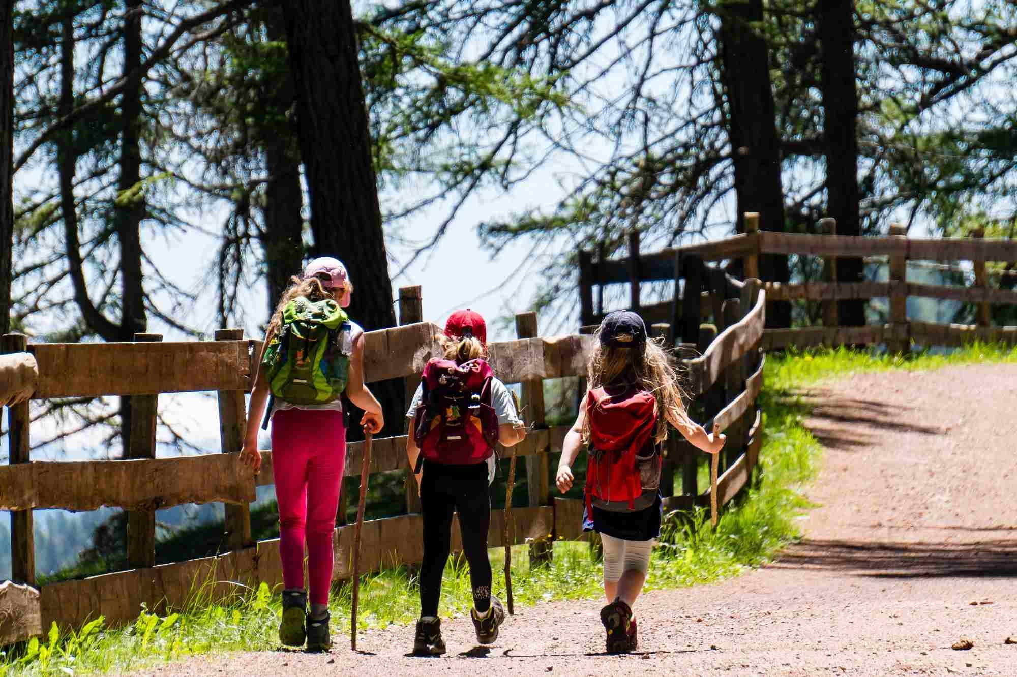Живые уроки: туротрасль предлагает развивать детский образовательный туризм