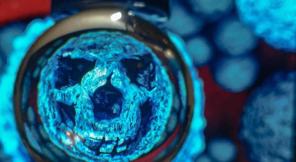 В Казахстане выявлено два новых случая коронавируса, общее число зараженных увеличилось до 35 – минздрав