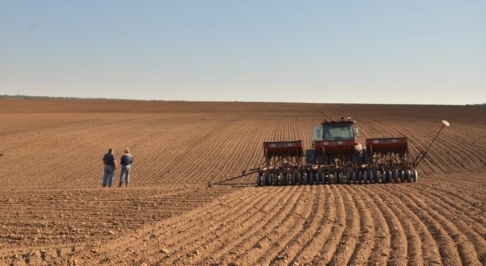 Станет ли Казахстан мировым продуктовым хабом?