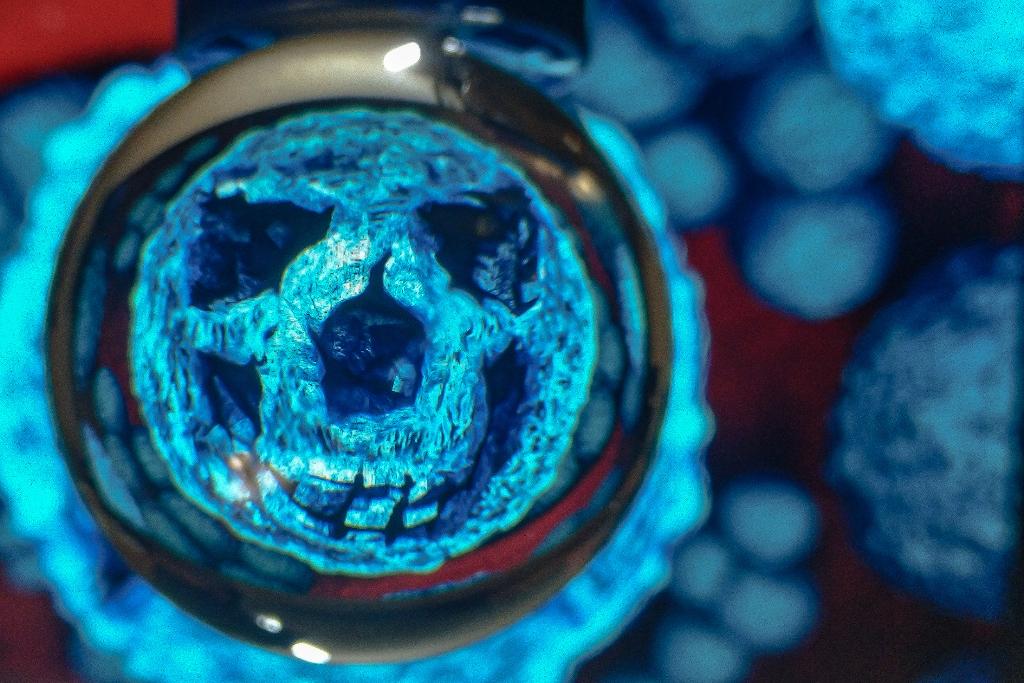В штаб-квартире ООН зафиксирован первый случай заражения коронавирусом